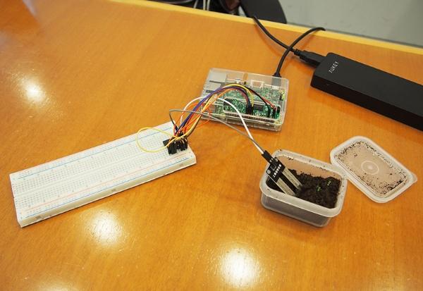 土壌湿度センサーとRaspberry Pi3を使った装置。これらだけなら1万円以下で作ることができる