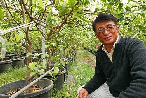 ハウス内で「ボックス栽培」という方法で育てるレモンを前に語る河合浩樹さん。「ボックス栽培」は、木を地面に直接植えるのではなく、鉢に植えて根の広がりを制限しながら育てる手法。樹勢は弱くなるが、果実生産をする上で様々なメリットが得られるという。(写真:高山和良)