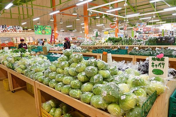 開店前の店内には、出荷者によって野菜や果物が山のように詰まれる(写真=水野浩志)
