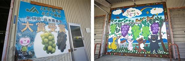 ぶどう集出荷センターの壁面には「第46回日本農業賞」大賞受賞を記念した絵画が飾られている
