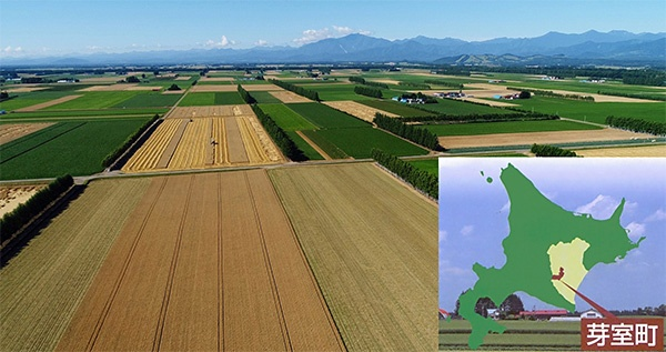 小麦をはじめとした広大な畑作地帯が広がる北海道の芽室町