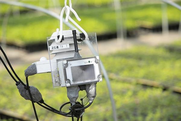 設置された「eセンシング For アグリ」の送信機。本体から延びたケーブルの先に、温度や湿度などを図る各種センサーがついている