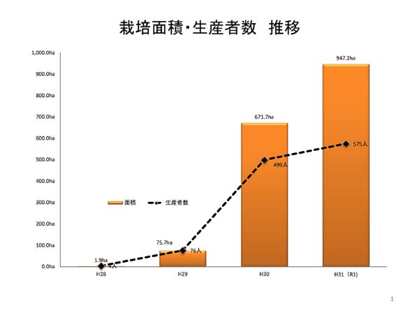 JAえちご上越における「つきあかり」の栽培面積と生産者数の伸び。平成29年から平成30年にかけて一気に10倍近くになり、昨年もさらに拡大した(提供:JAえちご上越)